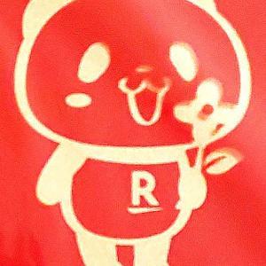 【雑誌付録】SPRING4月号 お買い物パンダマスク生活4点セットげっちゅーっ!!!!