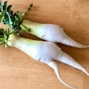 お野菜にも彫刻刀でカービング