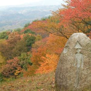 奥久慈の紅葉/奥久慈憩いの森