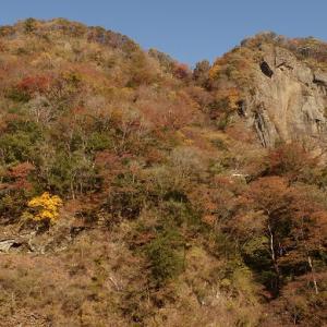 袋田の滝,今年の本気