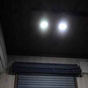 仄暗い水の底からハロゲン型LED電球を見繕ってみた