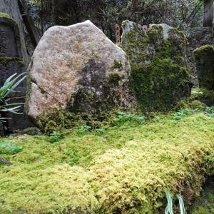 御岩神社でパワースポットを巡りながら人の縁とかを考えてみたり