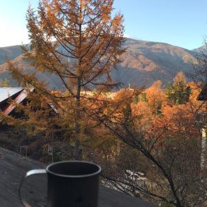 紅葉を眺めつつ朝のコーヒー