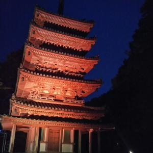 夜の海住山寺