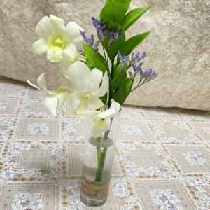 [PR]お花のある生活❁