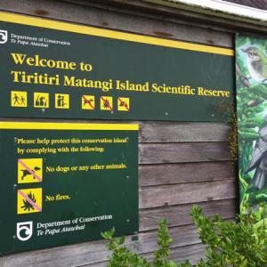 鳥の楽園、ティリティリマタンギアイランド(Tiritiri Matangi Island)