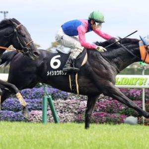 中京コースが得意なあの馬をねらう!GⅡ神戸新聞杯
