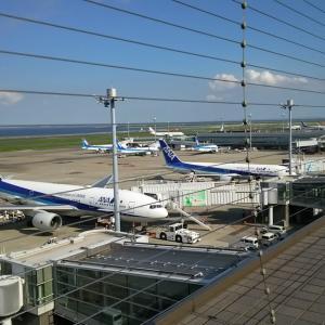ANA71便 搭乗記(羽田→新千歳)2018年9月