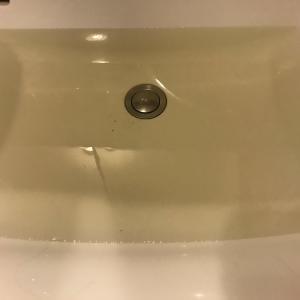 飼育水の黄ばみの原因と対策を考える。ブラックウォーターは水槽に良いのか?