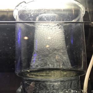 淡水でプロテインスキマーを実験してみました。意外と使えなくもない?