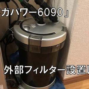 エーハイム2213から水漏れ!外部フィルター「メガパワー6090(GEX)」を購入しました。