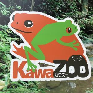 体感型カエル館「KawaZooカワズー」に行ってきました。