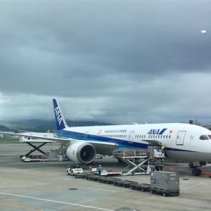 沖縄旅行(1)〜同じ空の下とは思えない明るさ〜