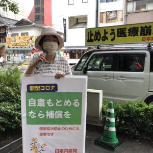 都知事選挙まぢか 宣伝とチラシ配布