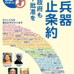 平和の波行動で「日本政府に核兵器禁止条約への批准を求める署名」宣伝