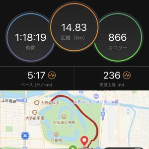 大阪城公園10kペース走
