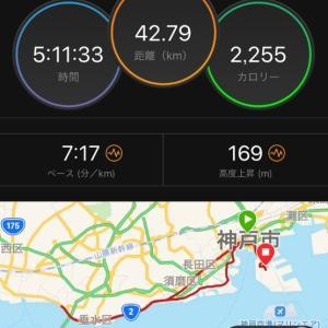 神戸マラソンコース試走