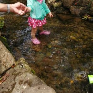 甥っ子姪っ子が遊びに来た!近所の川で水遊び