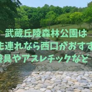 武蔵丘陵森林公園は子ども連れなら西口がおすすめ!遊具やアスレチックなど!