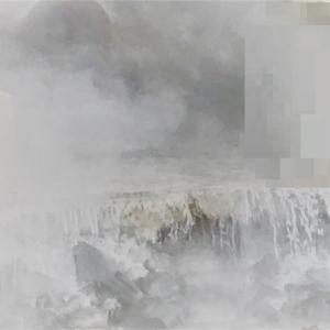 12月×最強温排水×フロッグゲーム