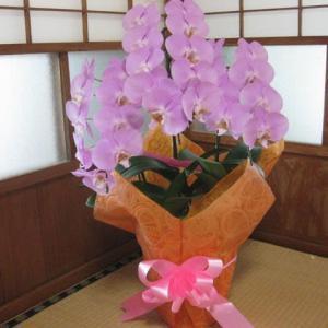 「母の日のプレゼント」