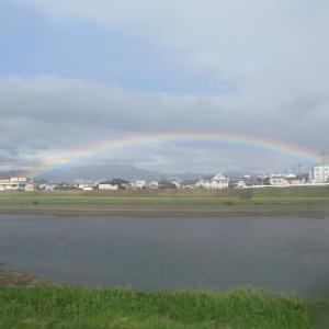 「虹を観た」