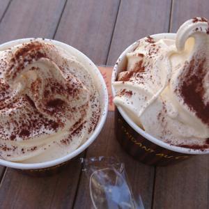 ミニストップのソフトクリームが好き♪期間限定『フォンダンショコラ』が美味しい!