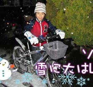 ソラ君、雪に大はしゃぎ 2012.1.23