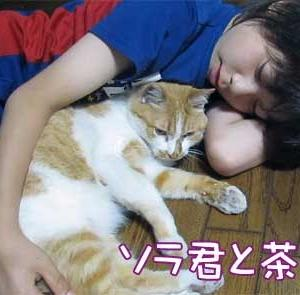 ソラ君と茶太郎 2012.6.5