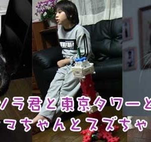 ソラ君と東京タワーとタマちゃんとスズちゃん 2012.1.31