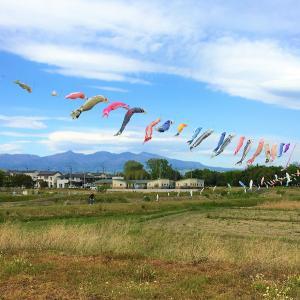 伊勢崎から見える鯉のぼりと赤城