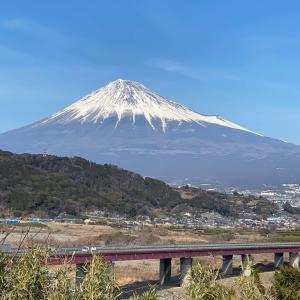 2月24日(水)浦和11レース予想です。