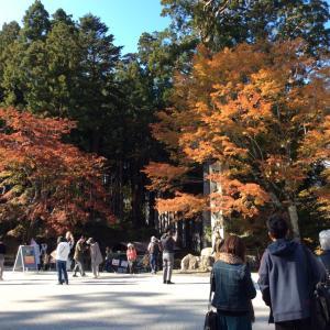 比叡山・東塔の鐘桜