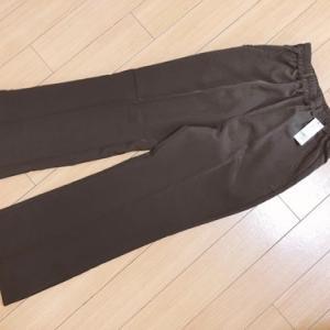 【154cm娘の服】WEGOでスリットフレアパンツイロチ買い!小柄も◎ビッグシルエットカットソー