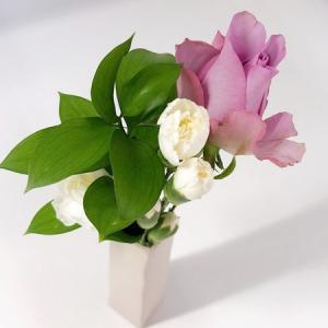 【PR】超便利!自宅ポストにお花が届く・お花の定期便「Bloomee LIFE」を体験