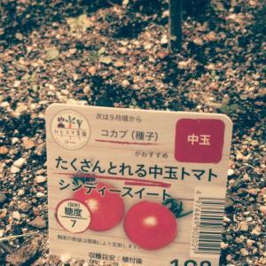 2021〜家庭菜園★