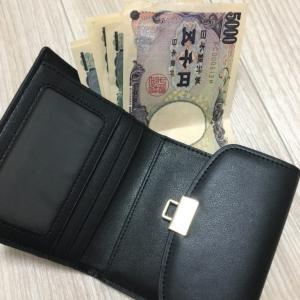 現金派が持つキャッシュレスな小さい財布。