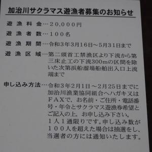 加治川漁協からハガキが届きました