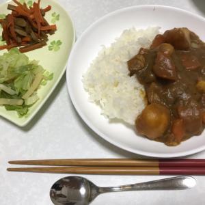 カレーライスと野菜の副菜