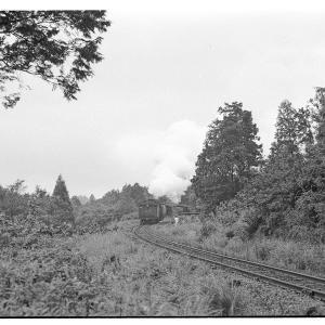D51後退牽引貨物列車  昭和43年9月八高線撮影日記(6)