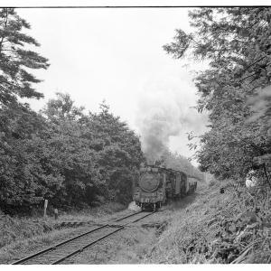 D51重連(回送?)貨物列車  昭和43年9月八高線撮影日記(7)