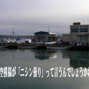 石狩 群来キタ━━━(゜∀゜).━━━!!!