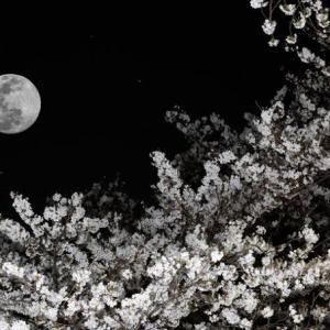 熱い吐息とラムネ色の月影と