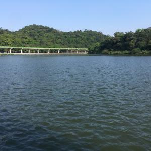 のどかな湖畔