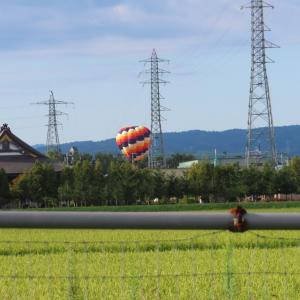 何故ここで気球が見える