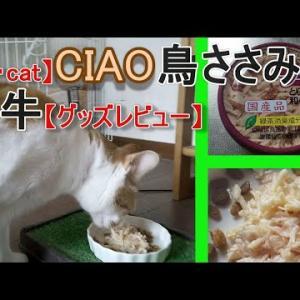 ウェットフードを食べない猫の話(【猫・cat】CIAOとりささみ&和牛【グッズレビュー】)