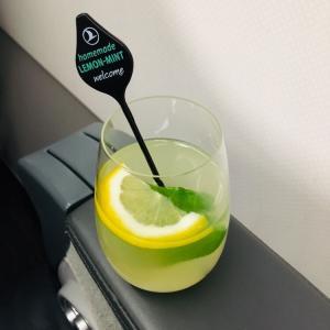 ターキッシュエアラインズ ビジネスクラス搭乗記 TK695 A321-200 カイロ→イスタンブール【スターアライアンスビジネスクラスで世界一周】