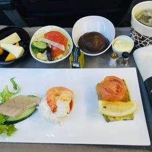 ターキッシュエアラインズ ビジネスクラス 搭乗記 TK372 イスタンブール→サマルカンド