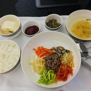 アシアナ航空 ビジネスクラス搭乗記 OZ574 A330-300 タシュケント→ソウル便【スターアライアンスビジネスクラス世界一周】