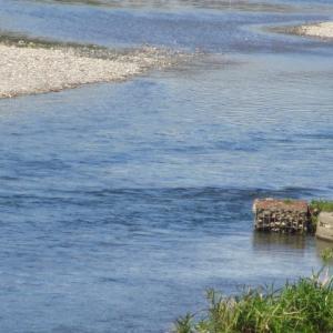 9月の末 川は穏やかにブルーに流れる
